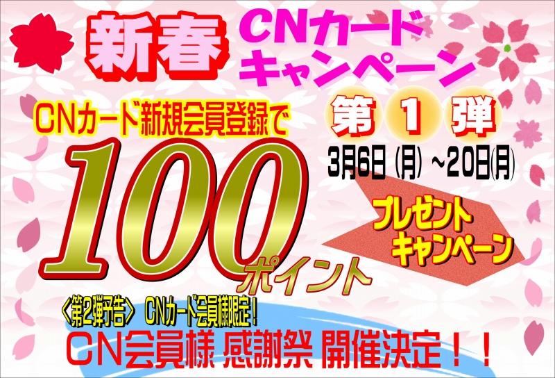 CN100ポイントキャンペーン