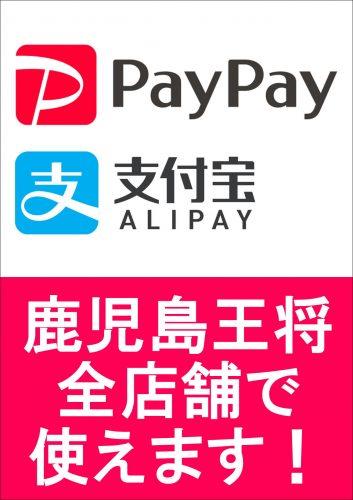 PayPay使えます縦